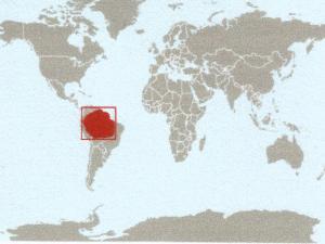 mapa sapo na amazonia